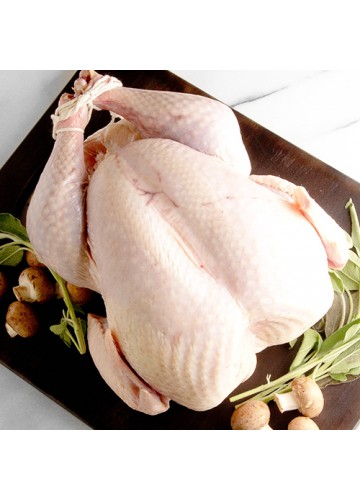 Turkey, Whole Raw