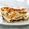 Lasagna - Vegetable